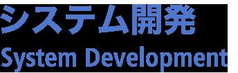システム開発 System development